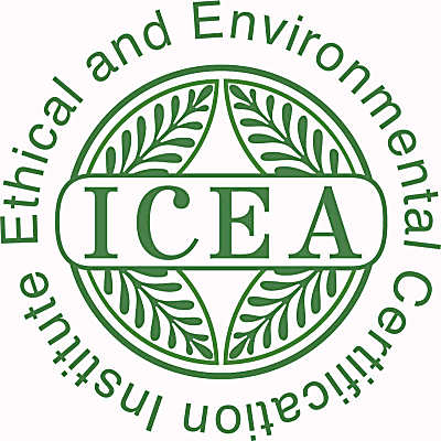 Image result for icea