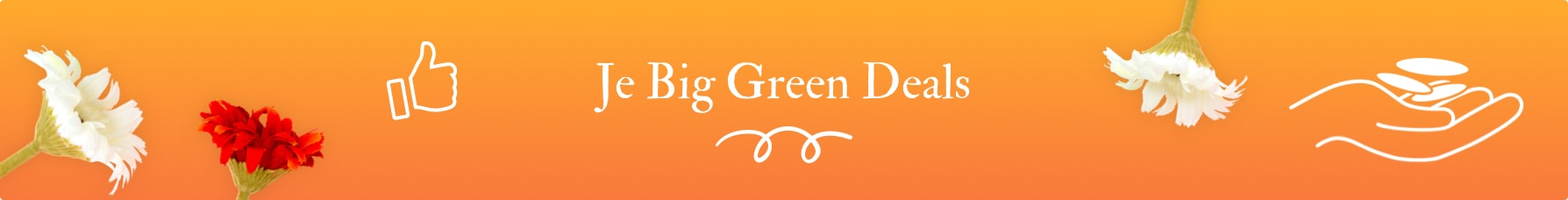Big Green Deals