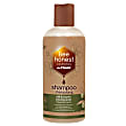De Traay Bee Honest Shampoo Olijf & Propolis 250ML (droog)