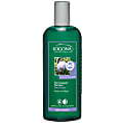 Logona Shampoo Jeneverbesolie (anti-roos)