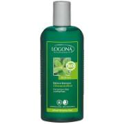 Logona Shampoo Citroenmelisse (bij vet haar)
